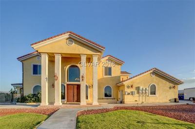 Las Vegas Single Family Home For Sale: 4005 West Richmar Avenue