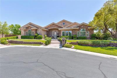 Las Vegas Single Family Home For Sale: 4798 Laurel Canyon Street