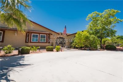 Las Vegas NV Single Family Home Under Contract - Show: $675,000