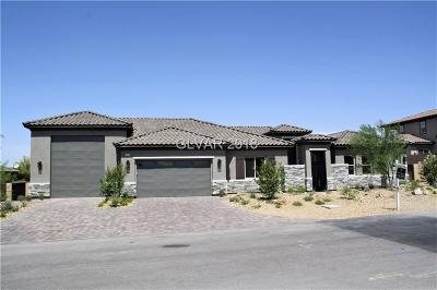 Henderson Single Family Home For Sale: 1610 Latigo Drive