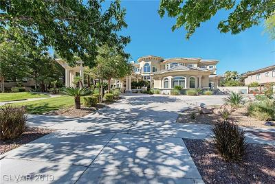Las Vegas Single Family Home For Sale: 9000 Players Club Drive