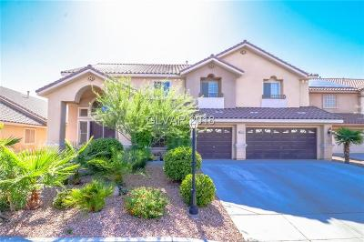 Las Vegas Single Family Home For Sale: 6133 Rabbit Track Street
