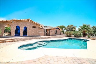 Las Vegas Single Family Home For Sale: 908 Morning Sun Court