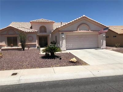 Las Vegas Single Family Home For Sale: 3016 Treesdale Drive