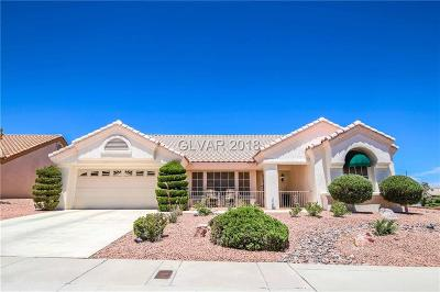 Las Vegas Single Family Home For Sale: 9900 Woodhouse Drive