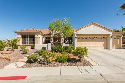 Single Family Home Under Contract - No Show: 2027 May Valley Way