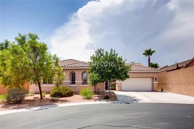 Las Vegas Single Family Home For Sale: 7109 Nature Valley Street