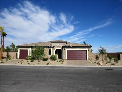 Las Vegas Single Family Home For Sale: 4358 Velvet Ridge Court Avenue #Lot 27