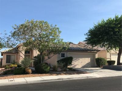 LAS VEGAS Single Family Home For Sale: 5205 Evergreen Meadow Avenue