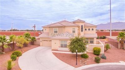 Las Vegas Single Family Home For Sale: 6820 Sleepy Pine Avenue