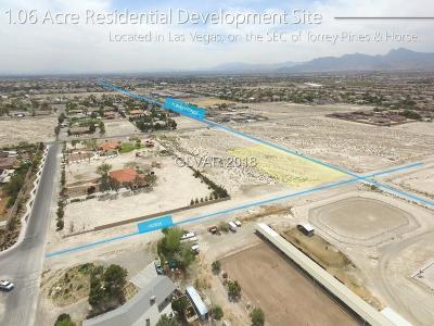 Las Vegas Residential Lots & Land For Sale: 4 Horse Dr Drive