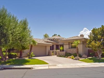 Anthem Cntry Club Single Family Home Under Contract - No Show: 75 Feather Sound Drive