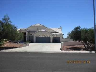 Las Vegas  Single Family Home For Sale: 7480 Rancho Destino Road