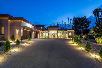 Las Vegas Single Family Home For Sale: 216 Starlite Drive