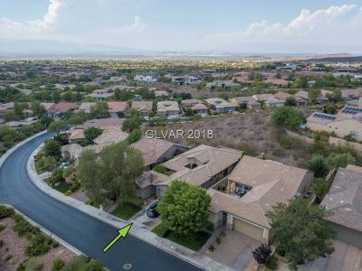 Henderson NV Single Family Home For Sale: $569,340