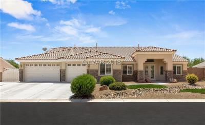 Las Vegas Single Family Home Under Contract - No Show: 6451 Glacier Ridge Avenue