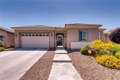 Single Family Home For Sale: 6904 Desert Wren Lane