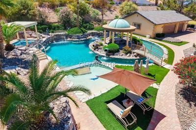 Henderson Single Family Home For Sale: 1101 Iolite Court