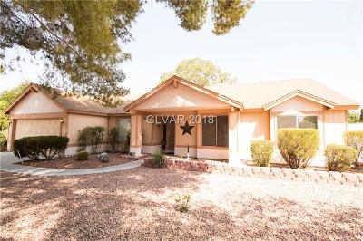 North Las Vegas Single Family Home Under Contract - No Show: 4604 Pacer Avenue