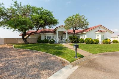 Las Vegas Single Family Home For Sale: 8575 West Craig Road