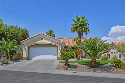 Las Vegas Single Family Home For Sale: 10004 Netherton Drive