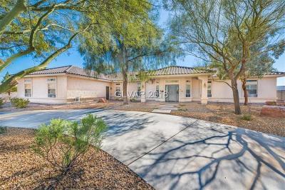 Las Vegas NV Single Family Home For Sale: $995,000
