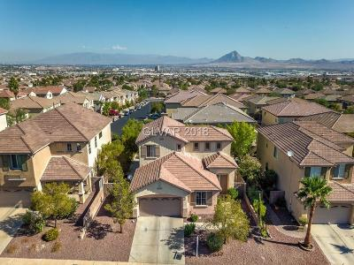 HENDERSON Single Family Home For Sale: 1166 Twinkling Meadows Drive