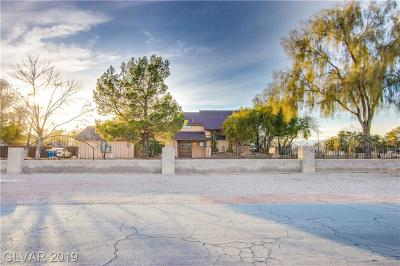 Las Vegas Single Family Home For Sale: 7135 Polaris Avenue