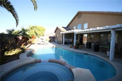 Henderson Single Family Home For Sale: 1078 Casady Hollow Avenue