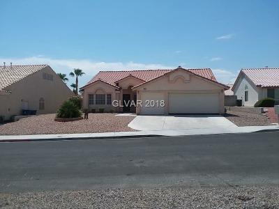 Las Vegas  Single Family Home For Sale: 6313 Kraft Avenue