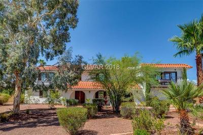 Las Vegas Single Family Home For Sale: 2161 Lisa Lane
