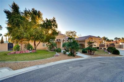 NORTH LAS VEGAS Single Family Home For Sale: 5645 Adavan Court