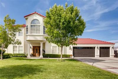 Las Vegas Single Family Home For Sale: 8860 La Mancha Avenue