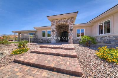 Boulder City Single Family Home For Sale: 386 Cats Eye Drive