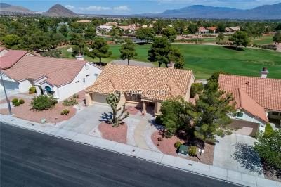 Las Vegas Single Family Home Under Contract - No Show: 9108 Sundial Drive