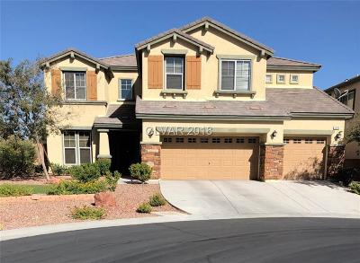 Single Family Home Under Contract - No Show: 7040 Twin Forks Peak Street