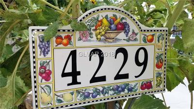 Las Vegas Manufactured Home For Sale: 4229 Amethyst Avenue