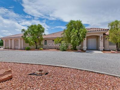 Las Vegas Single Family Home For Sale: 8785 Mustang Street