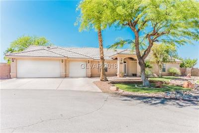 Las Vegas Single Family Home For Sale: 7430 Raven Avenue