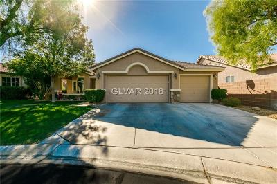 Las Vegas Single Family Home For Sale: 3209 Hill Valley Street