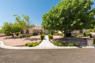 Las Vegas  Single Family Home For Sale: 3860 Quadrel Street