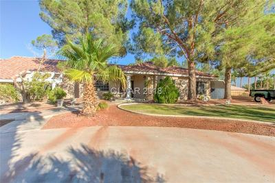 Las Vegas Single Family Home For Sale: 8640 Polaris Avenue
