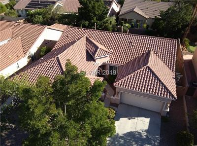 Single Family Home For Sale: 9915 Masterful Drive