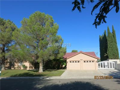 Boulder City Single Family Home For Sale: 1631 Indian Wells Drive