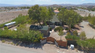 Las Vegas NV Single Family Home For Sale: $650,000