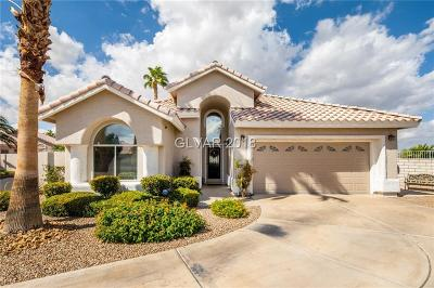 Henderson Single Family Home Under Contract - No Show: 2141 Eaglepath Circle