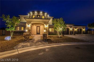 Clark County Single Family Home For Sale: 5790 Aspen Falls Circle