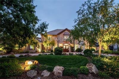 Las Vegas Single Family Home For Sale: 2500 Rancho Bel Air Drive