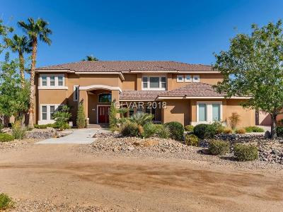 Single Family Home Under Contract - No Show: 2931 Ivanpah Drive