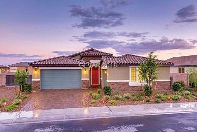 Las Vegas Single Family Home For Sale: 5841 Temple Ridge Court #17